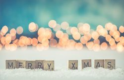 OCM opening times over the festive period and New Year image #1