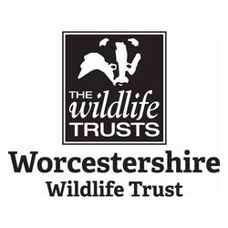 OCM have joined Worcestershire Wildlife Trust as a Corporate Member. image #1